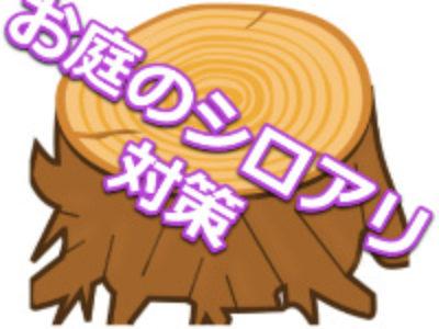 シロアリのお庭の対策方法は?|愛知県、岐阜県