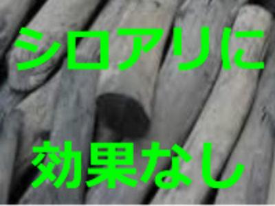 シロアリに竹炭や備長炭は効果がある? 愛知、岐阜