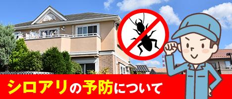シロアリの予防について